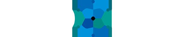 NanoXplore Graphene, Logo, X